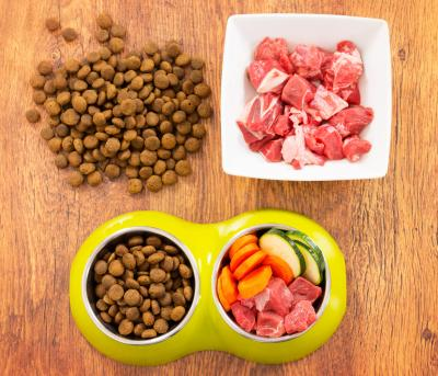 Good Natural Food For Dogs