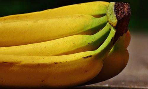 Hundekekse Mit Banane Und Sesam