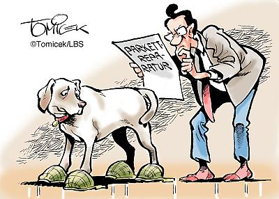 lbs-cartoon-hundekratzer-parkett-400px